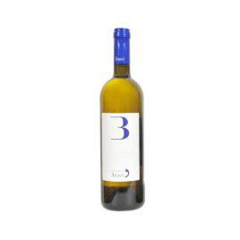 Vino Bianco – Cantina Bravi di Garfagnana
